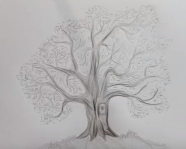 How to draw a tree by pencil