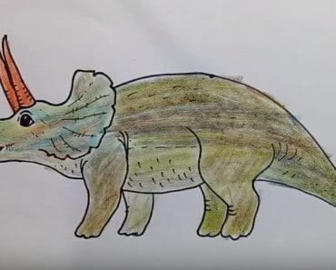 How to Draw Triceratops Dinosaur