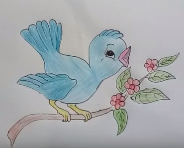 How to draw cute cartoon bird step by step for kids
