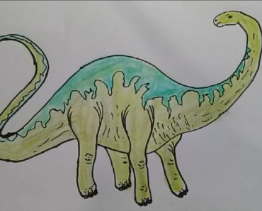 How to draw Apatosaurus