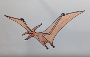 how to draw a pterodactyl dinosaur