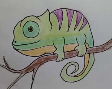 How to draw chameleon - draw cute animals
