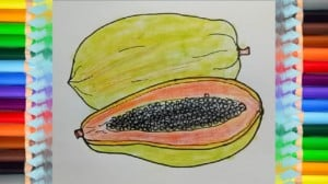 How to draw papaya-fruit