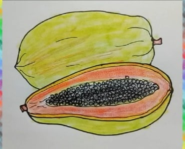 How to draw papaya-fruit