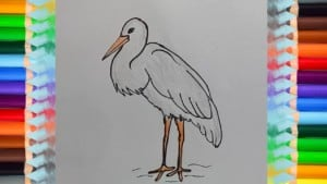 How to Draw a Stork
