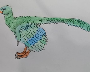 How to draw Archaeopteryx