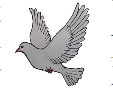 How to draw a Dove - Dove Drawing Tutorial