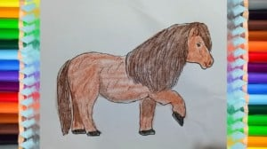 how to draw a Pony