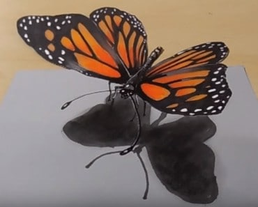 how to draw a butterfly 3D - 3D Drawing Butterfly