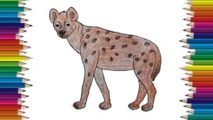 how to draw a hyena step by step easy - Easy animals to draw