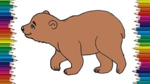 How to draw a bear cute and easy step by step for kids