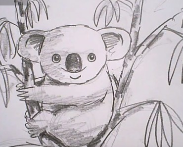 How To Draw A Koala easy step by step