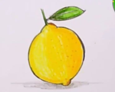 How To Draw a Lemon easy step by step