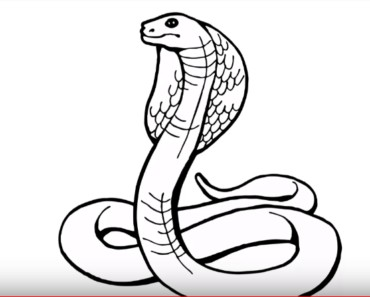 How to draw a cobra step by step easy