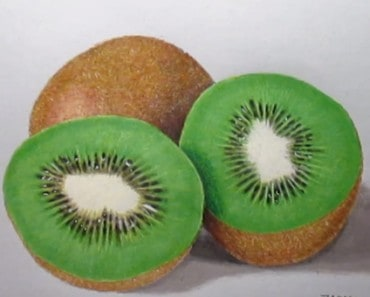 How to draw a kiwi Fruit easy step by step