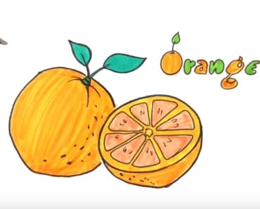 how to draw an orange easy step by step