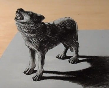 How to draw a wolf 3D easy step by step - Anamorphic Illusion on Paper