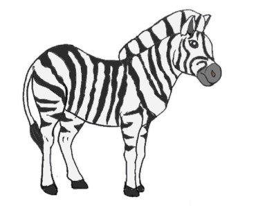 How to draw a zebra horse step by step - Easy animals to draw