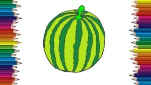 How to draw a watermelon easy step by step