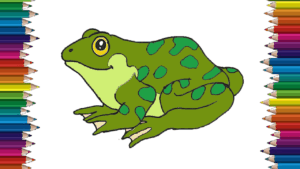 How to draw a Frog step by step - Frog drawing easy for kids