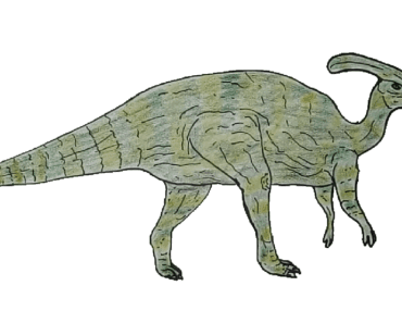 Dinosaurs drawing and coloring - How to draw a parasaurolophus step y step