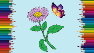 How to a aster flower step by step - aster flower drawing easy