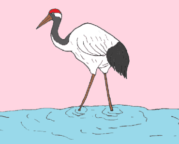 Red crowned crane drawing and coloring for kids - How to draw a Red crowned crane