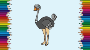 Cute Ostrich drawing and coloringfor kids - How to draw a cute Ostrich easy