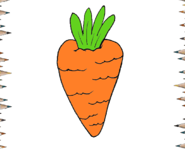 How to draw a carrot for kids - Carrot drawing and coloring