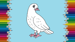 How to draw a cute dove easy for kids - Cartoon Dove drawing step by step