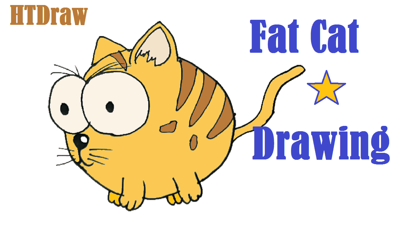 Fat Cat Drawing And Coloring How To Draw Step By Step