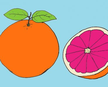 How to draw a Grapefruit easy
