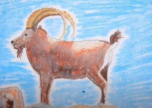 How to Draw an Ibex