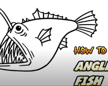 How to draw an anglerfish step by step