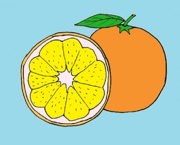 How to draw orange slice