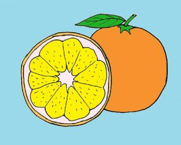 How to draw orange slice