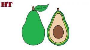 How to draw a avocado