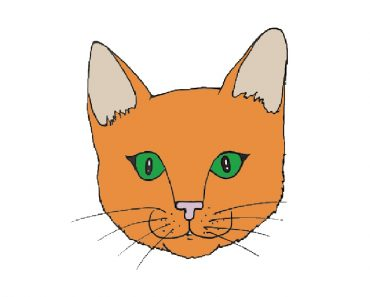 How to draw a face cat for beginners