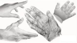 How to draw hands for beginners