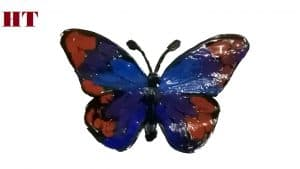 How to paint a butterfly for beginners