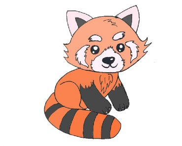 How to Draw a Red Panda cute and easy