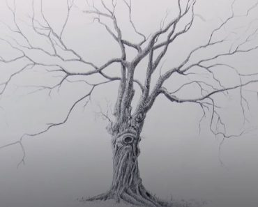 How to Draw a Dead Tree Step By Step