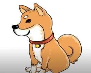 How to Draw a Shiba Inu easy for beginners