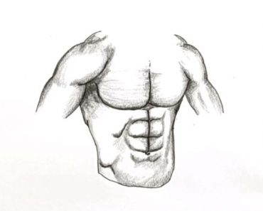How to draw Abs Easy For Beginners