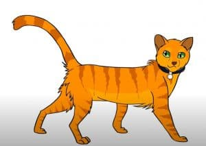 How to draw Firestar from Warrior Cats Step By Step