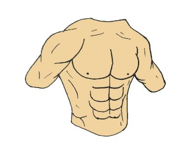 How to draw Six pack
