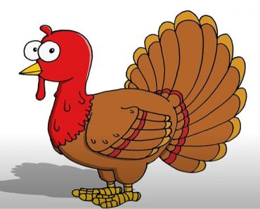 Cartoon Turkey Drawing Easy For Beginners Step by Step