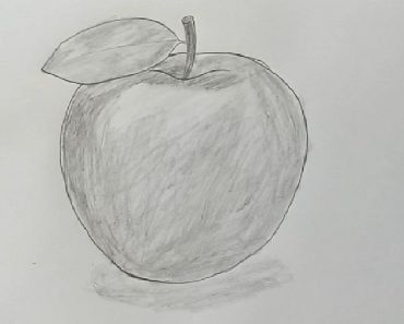 Apple Drawing with Pencil - Fruit Pencil Sketch