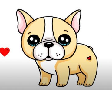 How to Draw a French Bulldog Cute and Easy