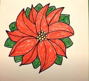 How to Draw a Poinsettia Step By Step